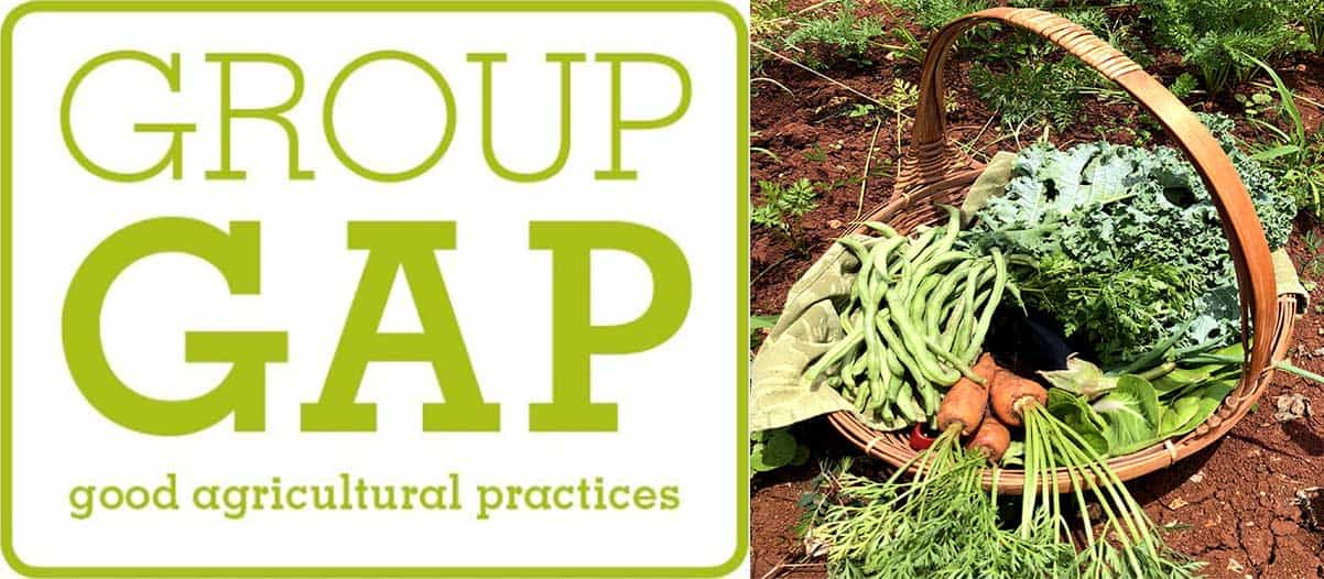 Current Projects - USDA GroupGAP