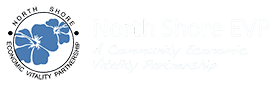 North Shore EVP Footer Logo